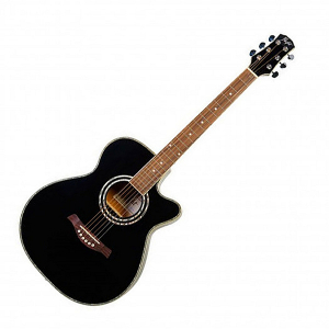 Flight F-230C BLK Acoustic guitar